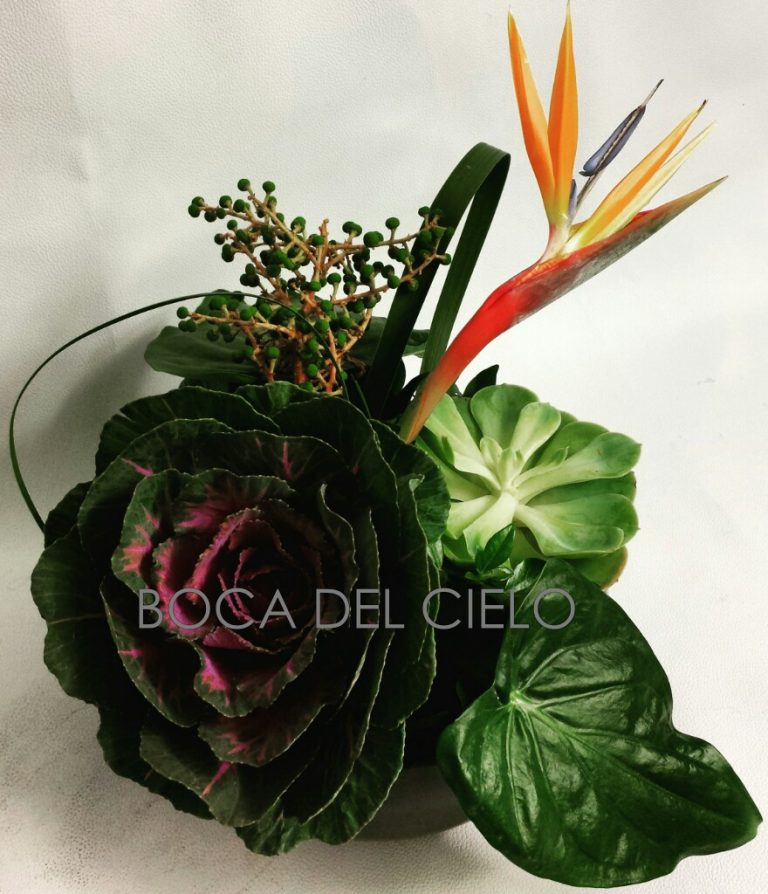 Botanical Mood